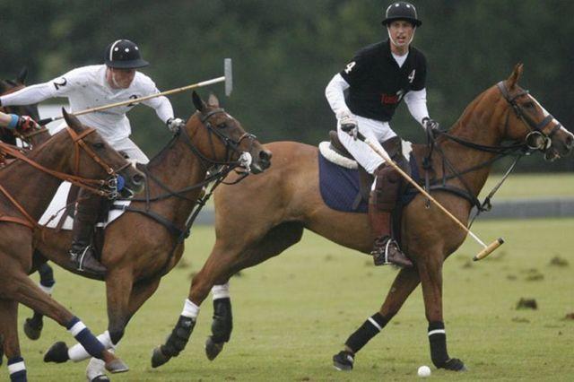 Olahraga Polo