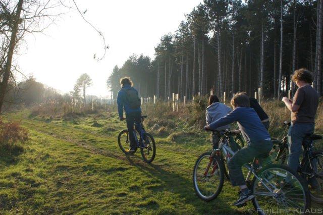 Bebas Bersepeda di Hutan
