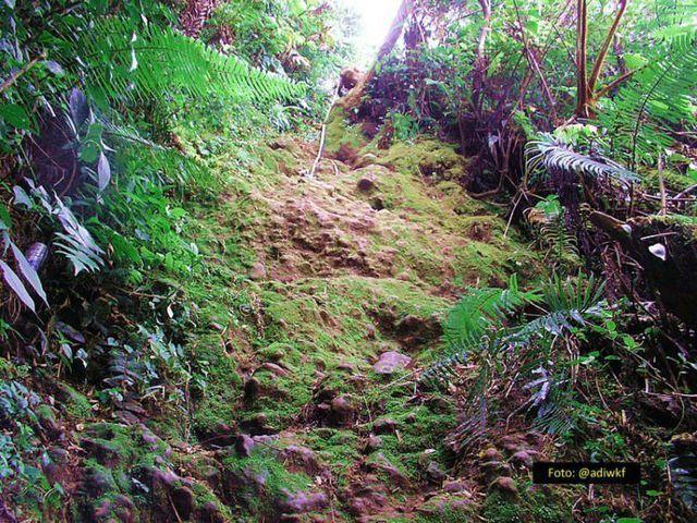 Gunung Salak Sukabumi