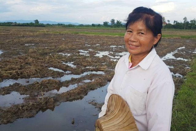 Salah satu petani Thailand