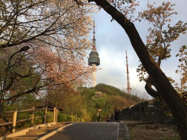 Jalan menuju gunung Namsan