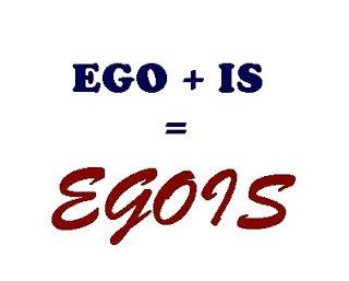 google/egois