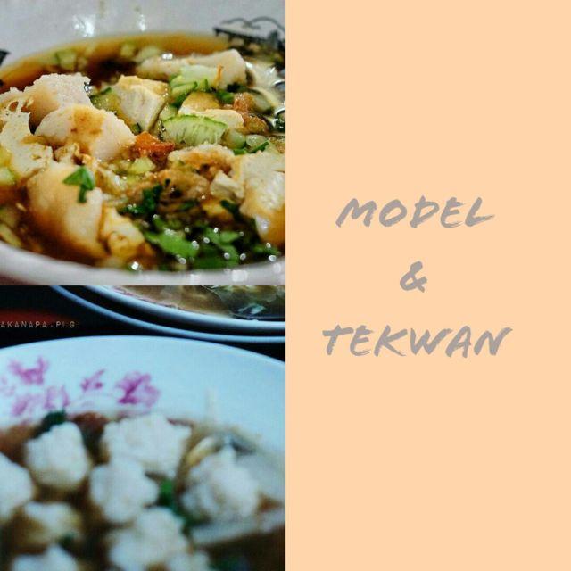 Model & Tekwan