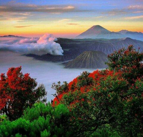 Taman Nasional Bromo Tengger Semeru Malang Jawa Timur