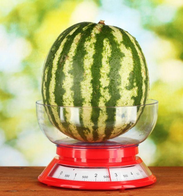 tips memilih semangka yang manis