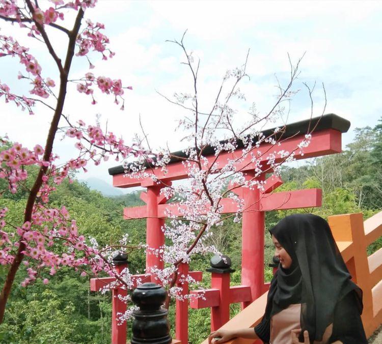 The Hills Vaganza Wisata Kuliner Kekinian Ala Jepang Di