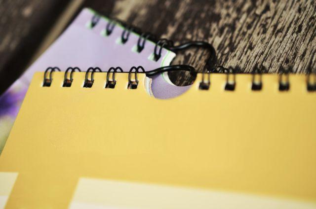 Menulis buku diary