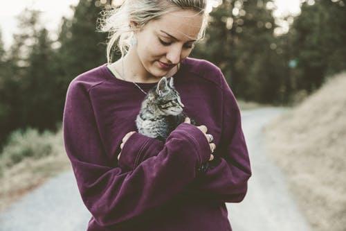 Menyayangi kucing