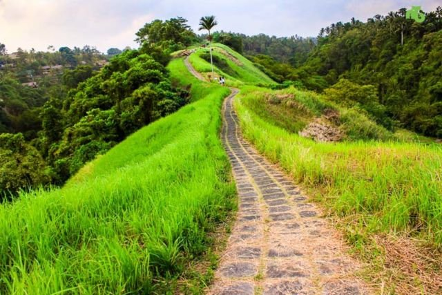 Bukit Campuhan by smartmama