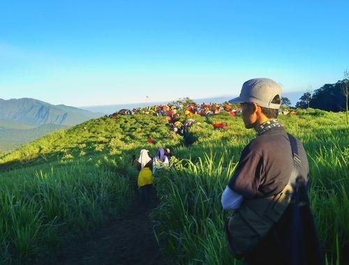 Panorama hijaunya