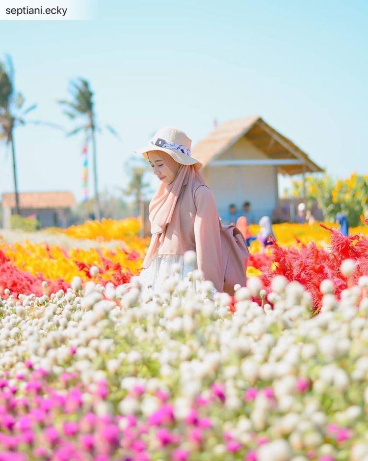 liburan di romantic garden