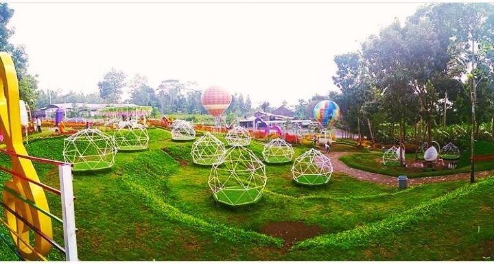 Alamanda Jogja Flower Garden Taman Wisata Terbaru Di Jogja Yang Menyejukkan Mata