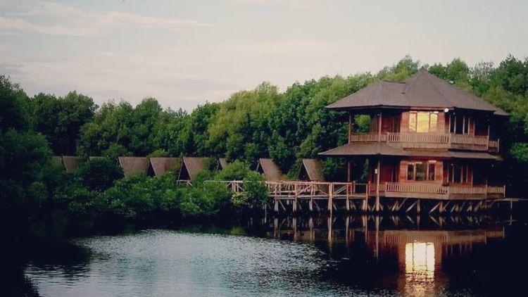 Wisata Alam Mangrove Angke Tempat Bersantai Yang Asyik Di