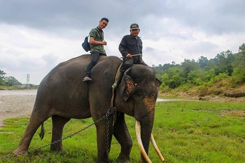 Taman Wisata Alam Seblat, di Kabupaten Bengkulu Utara, Provinsi Bengkulu