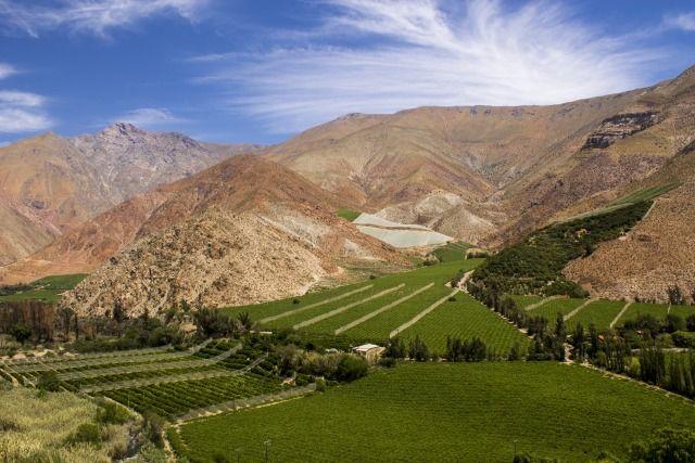 Lembah Elqui yang Asri
