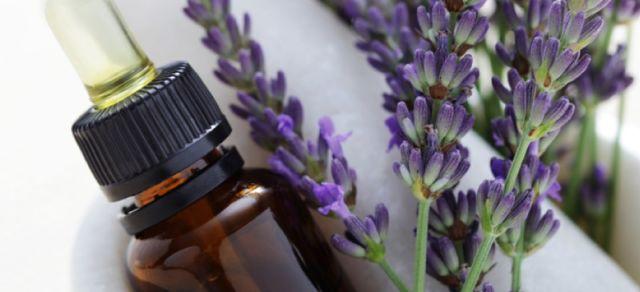 Minyak Lavender untuk meremajakan kulit