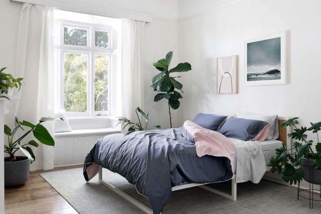 Tambahkan tanaman segar untuk kenyamanan kamar tidur