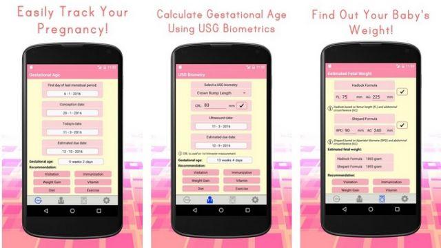 Aplikasi Kalkulator Kehamilan