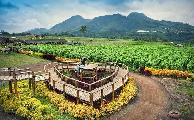 rekomendasi kampung wisata desa pujon kidul malang