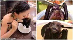 Daftar Kuliner Liar Di Pasar Kota Wuhan Tempat Virus Corona