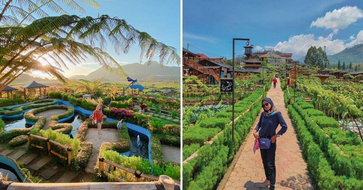 Cafe Sawah Pujon Kidul Destinasi Hits Di Malang Yang Menyajikan Pemandangan Alam Menakjubkan
