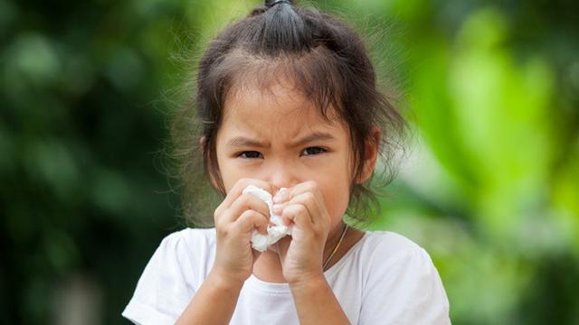 gejala sinusitis anak
