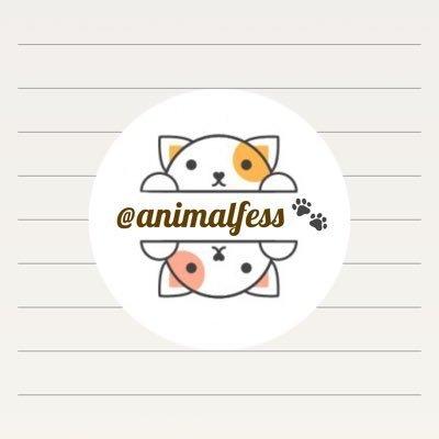@animalfess2