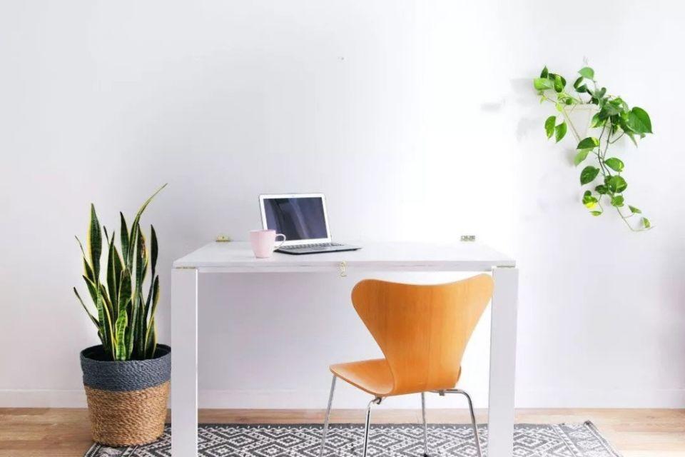 Meja kerja putih super minimalis dengan hiasan pot tanaman karya Apartment Therapy