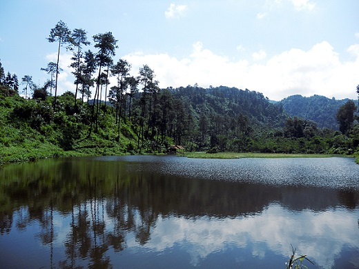 Photo by Suarapurwokerto