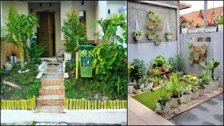Trik Menghadirkan Taman Rumah Di Area Sempit Estetis Dan Nggak Monoton Kayak Di Rumah Sakit