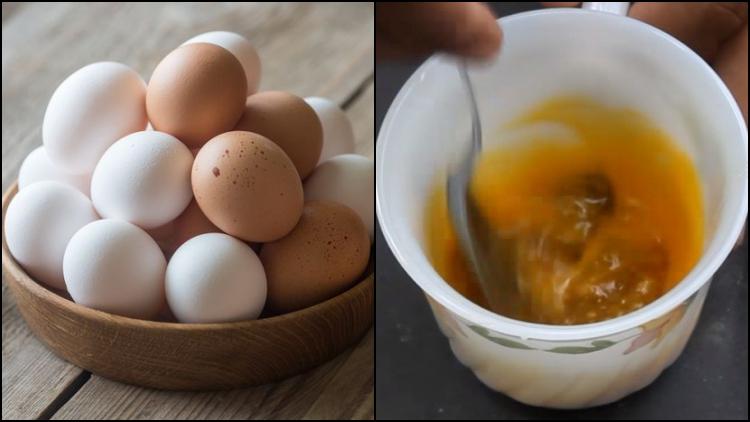 Perbedaan Khasiat Telur Ayam Kampung Dengan Telur Ayam Ras Kalau Untuk Kesuburan Manjur Mana