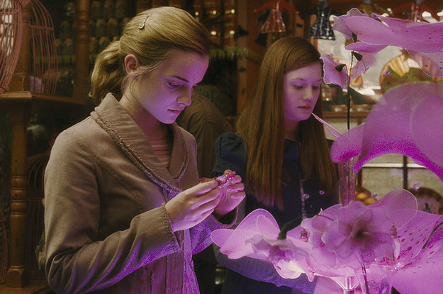 Hermione and Ginny looking at love potion
