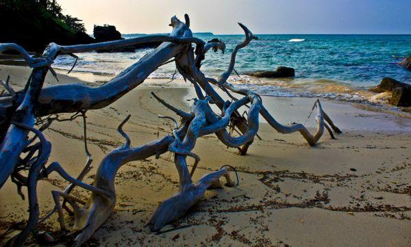 Keindahan Pantai Batu Putih