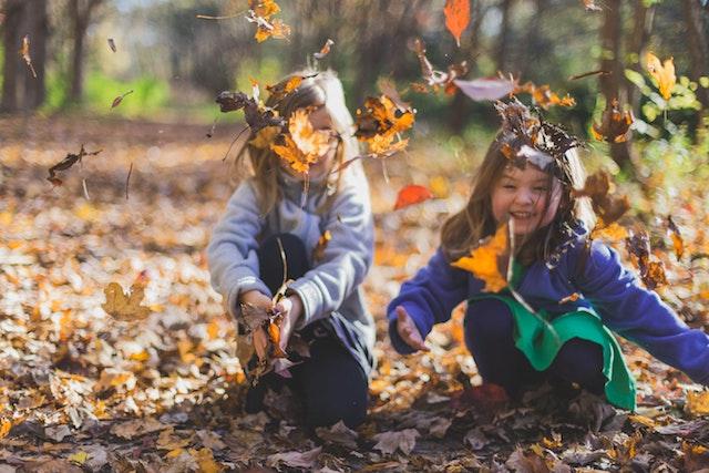 Jangan takut belajar langsung dari alam. Photo by Michael Morse from Pexels