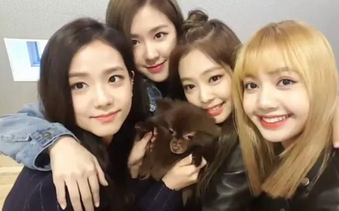 Photo by Vlive
