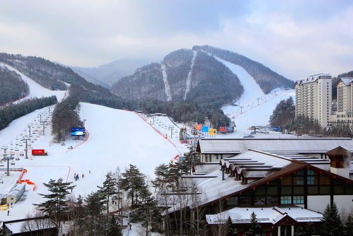 Main ski, yuk!