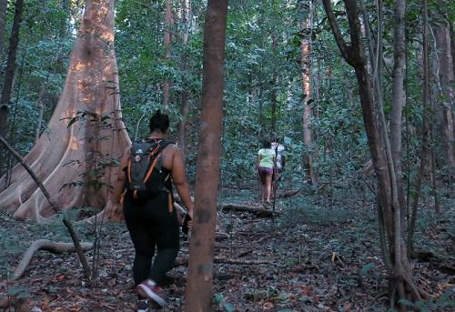 Perjalanan ke Cagar Alam Tangkoko Batuangus