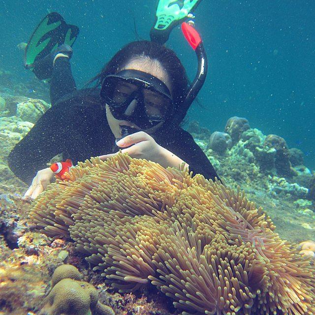 Terumbu karang dan ekosistemnya