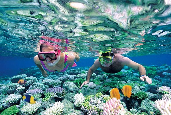 Snorkeling | Image from superadventure.co.id / credit photo: marlionllc.com