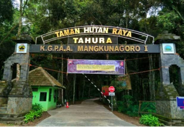 Tahura