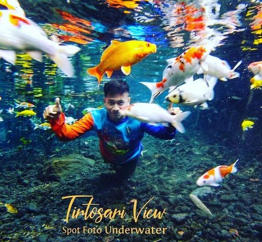 Tirtosari View Underwater