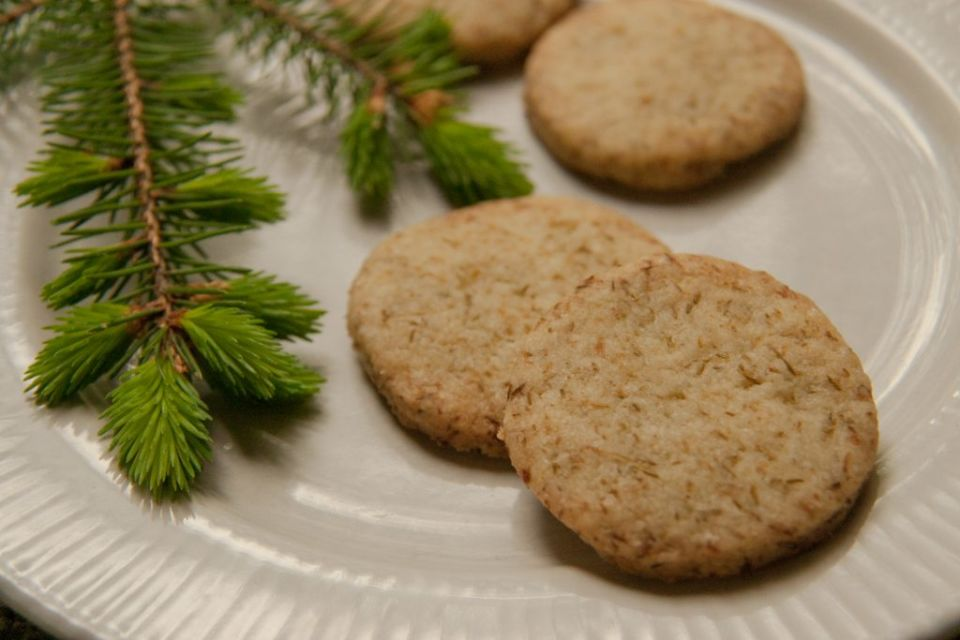 Backyard Forager Spruce Tip Shortbread Cookies: Recipe - Backyard Forager