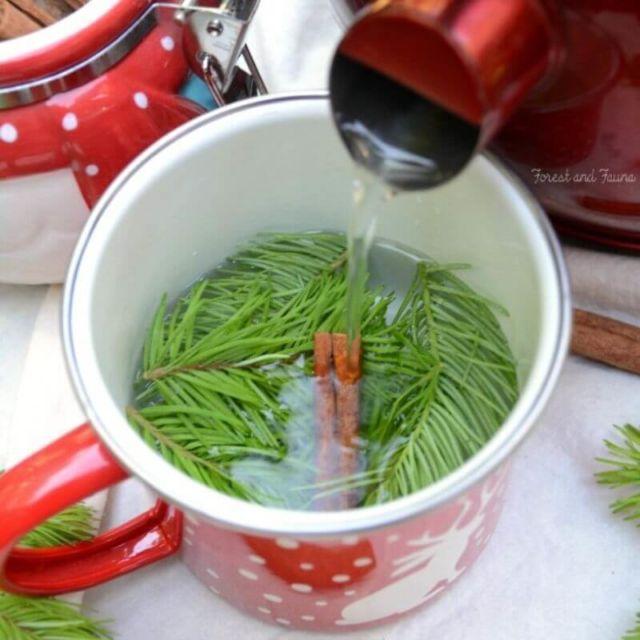 Douglas Fir Tip Tea (or spruce tip tea)