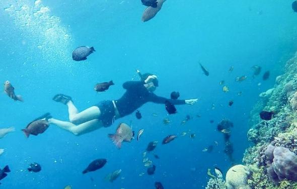 Spot foto freediving