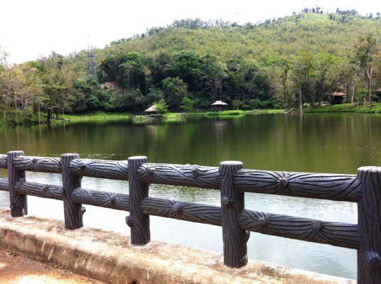 Paraiso Tribu Vizcayano
