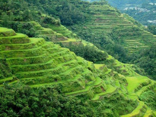 Banaue Rice Terraces via Hotels