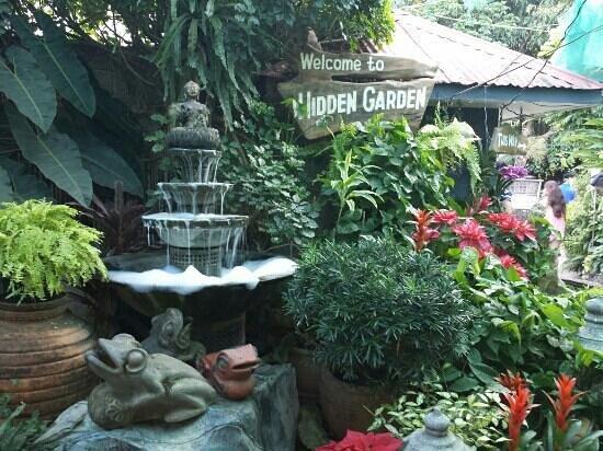 Hidden Garden by Tripadvisor