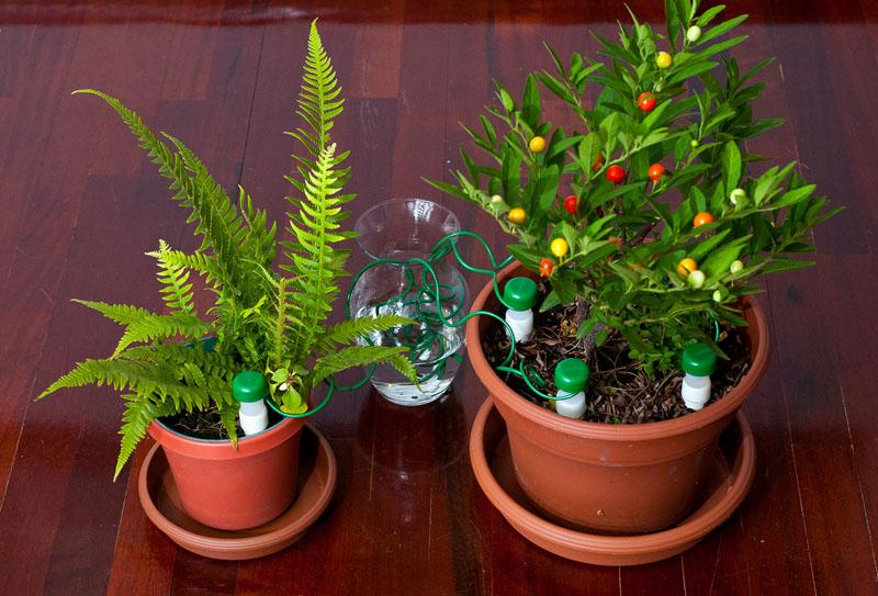 Alat untuk menyiram tanaman