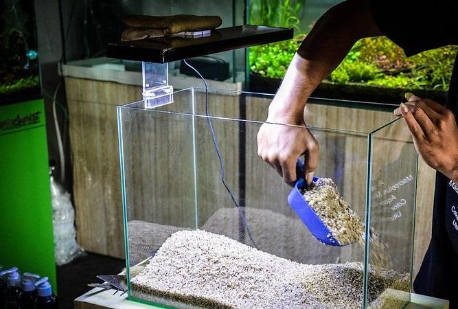 cara membuat aquascape pasir silika