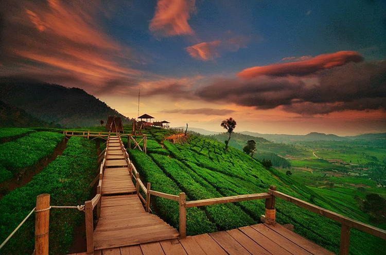 Photo by Okezone Travel on Google